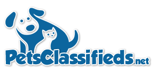Pets Classifieds